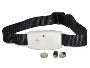 Effective Remote Pet Training Collar , Pet Pest Repeller With No Odour